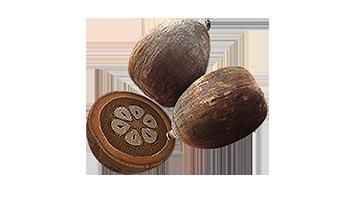 babacu-oil